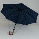 parapluiehuntsmancheck3