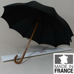 parapluiejonc1