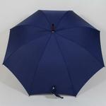 parapluiekensingtonbleu3