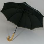 parapluielaroche2