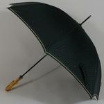 parapluielaroche1