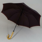 parapluielarochebordeaux3