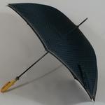 parapluielarochegris3