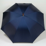 parapluiemister3