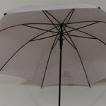 parapluiegris5