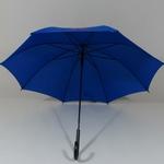 parapluiebleu3