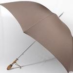 parapluieovalie2