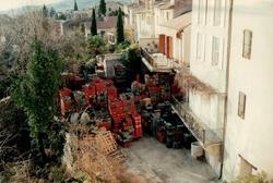 apport des olives devante le moulin - extérieur
