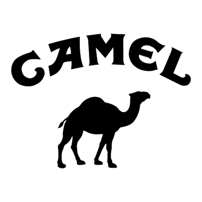 Sticker CAMEL TROPHY ref 5