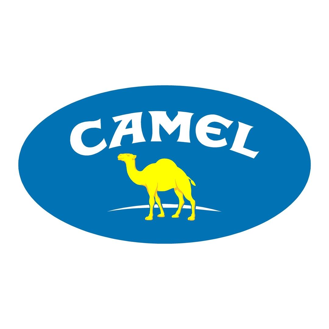 stickers camel trophy ref 7 dakar land rover 4x4 tout terrain rallye competition pneu tuning amortisseur autocollant fffsa (2)