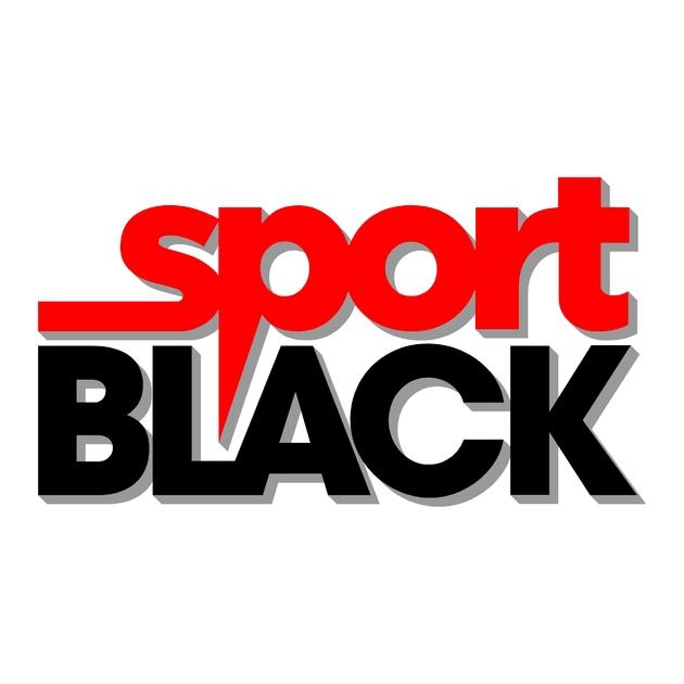 sticker mitsubishi ref 39 logo l200 pajero sport black 4x4 land tout terrain competition rallye autocollant stickers
