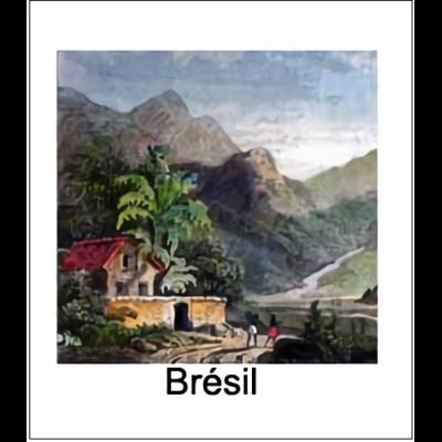Gravure BRESIL (chosir votre forme d'abat-jour et fond de couleur)