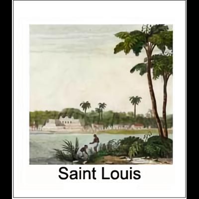 Gravure SAINT LOUIS (choisir votre forme d'abat-jour et fond de couleur)