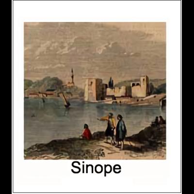 Gravure SINOPE (choisir votre forme d'abat-jour et fond de couleur)