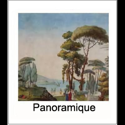 Gravure PANORAMIQUE (choisir votre forme d'abat-jour et fond de couleur)