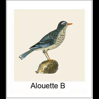Gravure ALOUETTE B (choisir votre forme d'abat-jour et fond de couleur)
