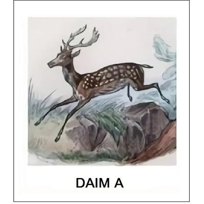 Abat-Jour Gravure DAIM A (Choisir votre forme d'abat-jour et fond de couleur)