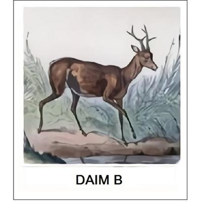 Abat-Jour Gravure DAIM B (choisir votre forme d'abat-jour et fond de couleur)