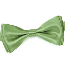 Noeud Papillon Vert Tilleul
