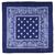 bandana-bleu-marine-AT-03069-A16