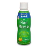 Mineral Plants