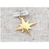 Pendentif étoile filante doré H1.1cm L1.1cm acier inoxydable - Mile Mila M18A006
