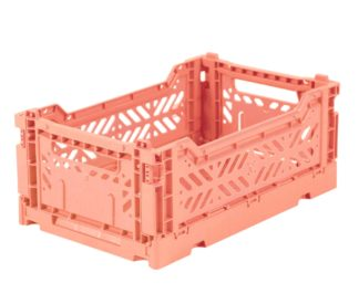 salmon-minibox-324x275