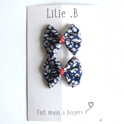 Duo de barrettes Feather Fileds coloris bleu
