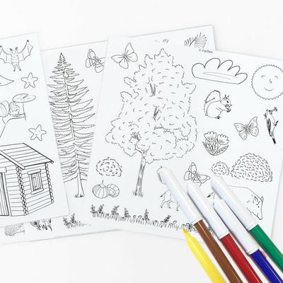 Jeu de magnets à colorier - Dans la forêt - 6 feutres inclus