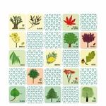 jeu-memory-arbres (1)