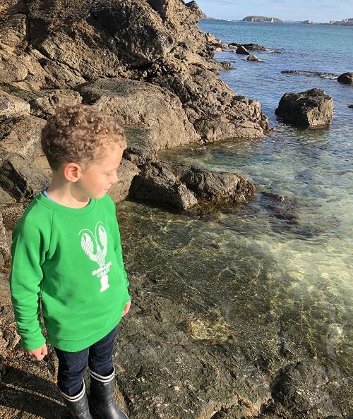 diapo emeraude coast sweat vert homard