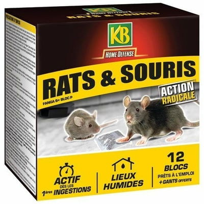 Rat et souris blocs 12x20g Home defense