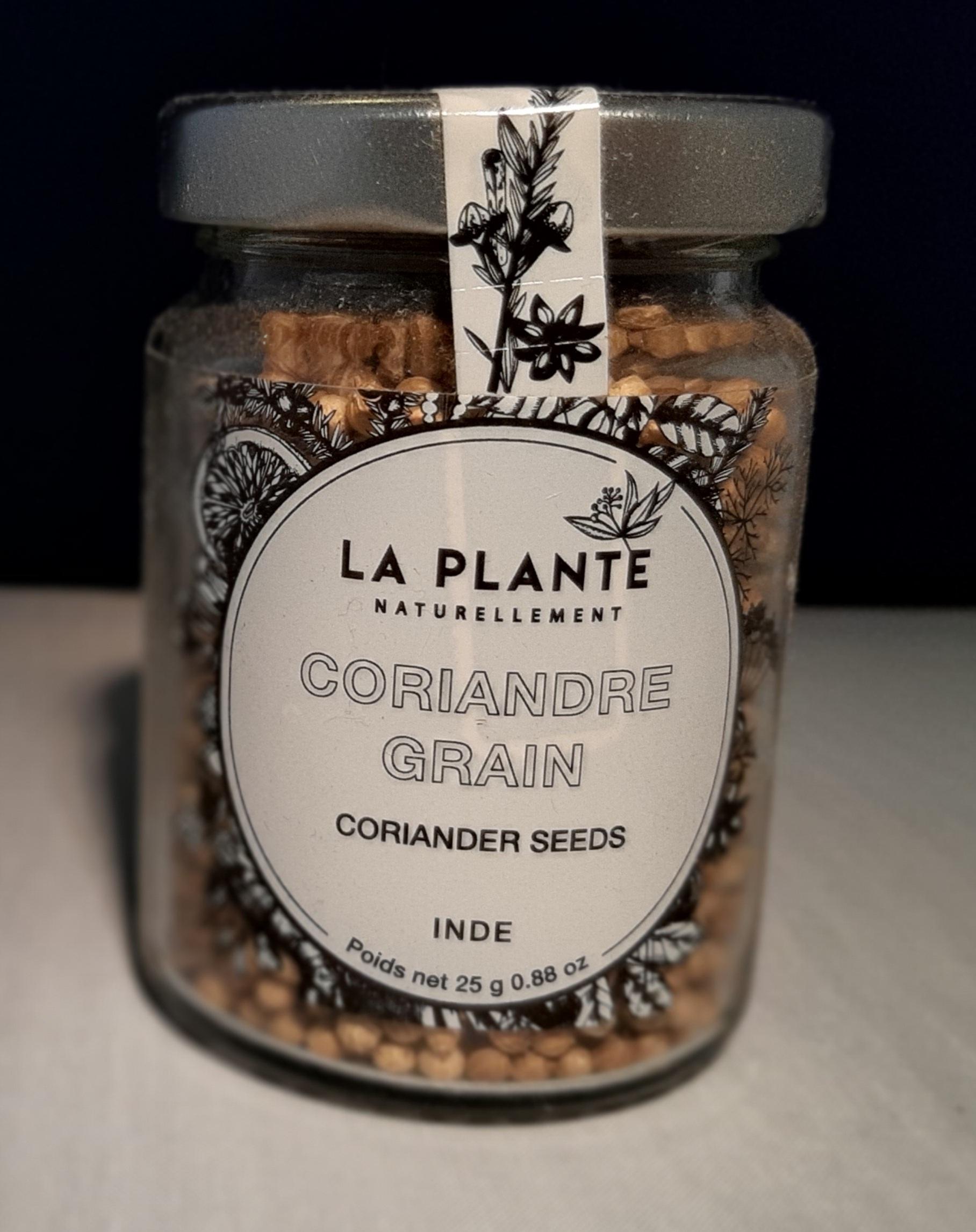 Coriandre en grains BIO - 25gr