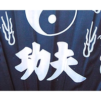 eventail-tai-chi-noir-510-150