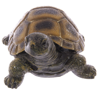 tortue-feng-shui-interieur-ou-exterieur-17075-1019