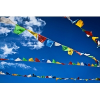 Guirlande de 20 drapeaux tibétains