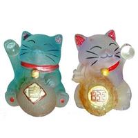 Duo de chats chance et santé