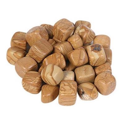 Lot de 8 pierres de bois fossile