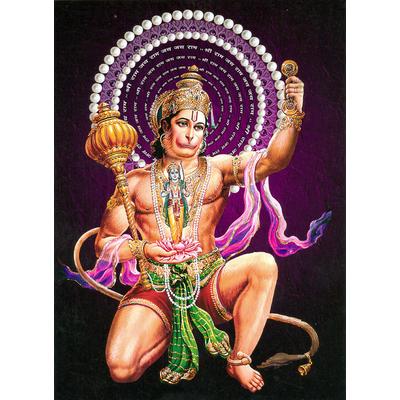12 boites d'encens Satya Nag Champa Hanuman : le roi singe
