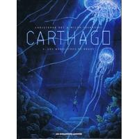 Carthago : 04. Les monolithes de Koubé