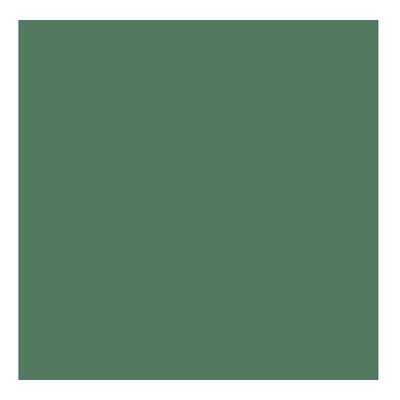 Kydex T P1 Infantry Green épaisseur 080