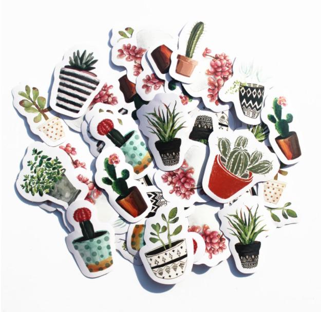 Cactus - 45 autocollants tropicaux