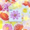 """""""Printemps"""" - 45 autocollants en forme de fleurs"""