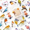 """Birdy"" - 45 autocollants oiseaux"