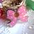 emballages-4-clips-pour-fermer-les-sachets-en-6959105-clip-noeud-png-4a8b-53bd1_big