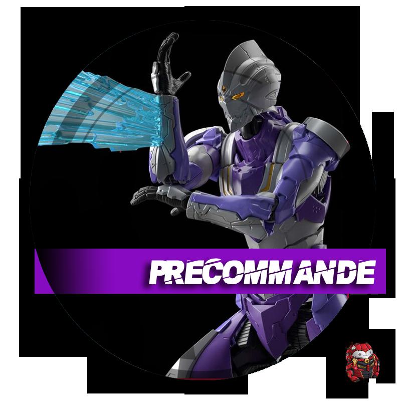 76111-Preco