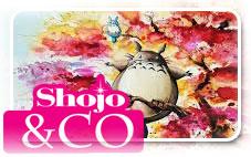Les model-kits des séries Shojo et autres !