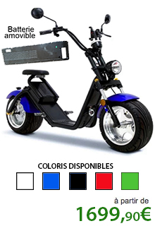 Scooter Caigiees 2.0