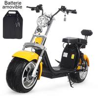 Scooter électrique Citycoco Jaune à Batterie démontable, autonomie jusqu'à 50km