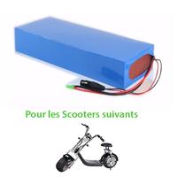 Batterie 60V12Ah ou 60V20Ah pour Azur Scooter type Harley